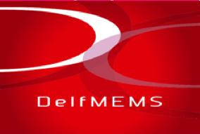 DelfMEMS